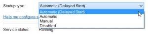 Services Delay