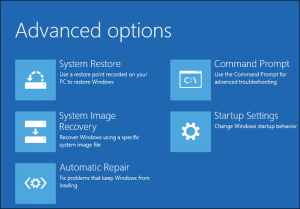 Recovery Advanced Options