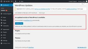 WordPress-Update